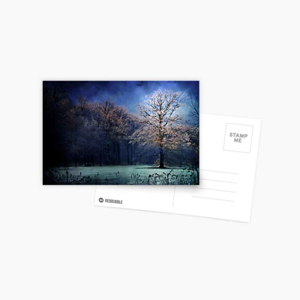 My blue tree Postcard