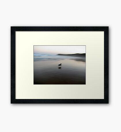 Jump for Joy Framed Print