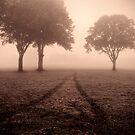 A Warm Awakening by Alan Watt