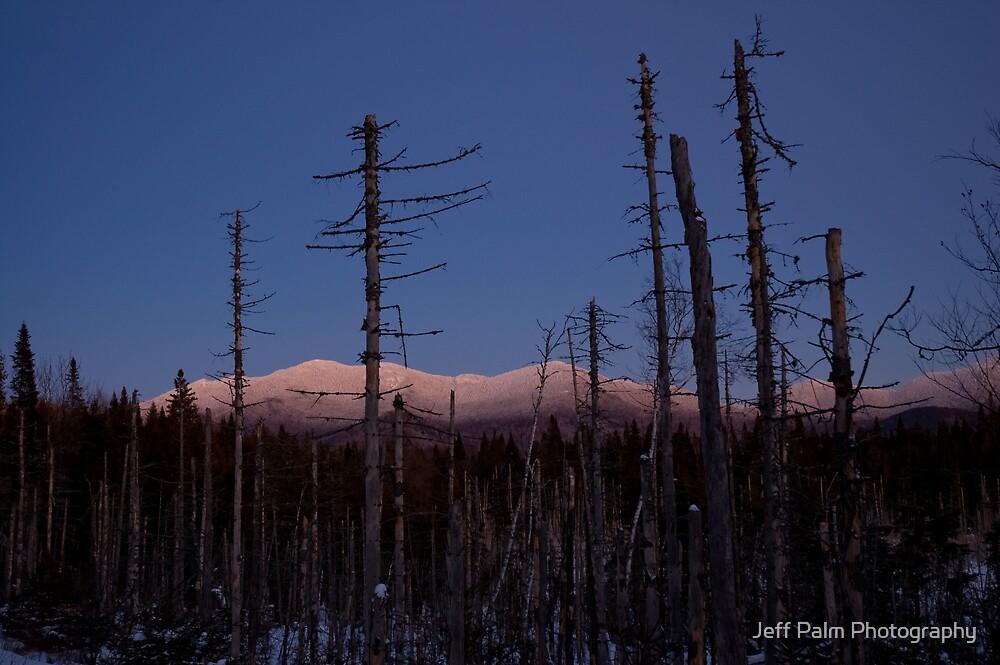 The Last Light by Jeff Palm Photography