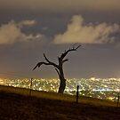 Light Polution - Adelaide by pablosvista2