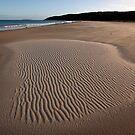 Hunter Beach by Travis Easton