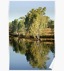 'reflections' billabong , central Australia  Poster