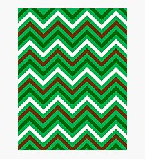 Chevron Pattern Green Brown And White Photographic Print