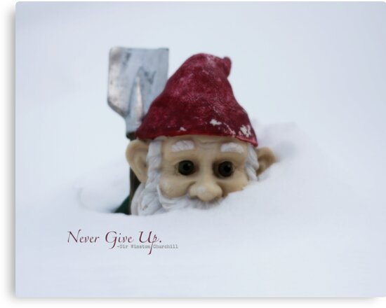 Never Give Up by Kelly Pierce