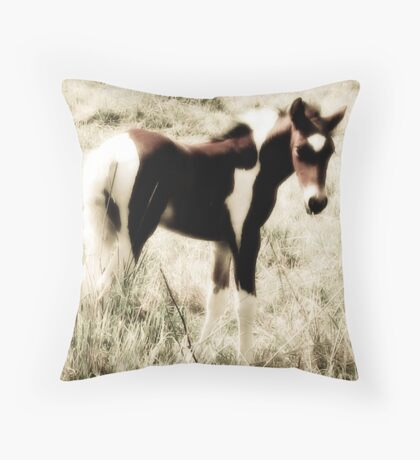 Pretty paint Throw Pillow