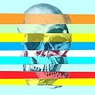Glitch Skull by Ali Gulec