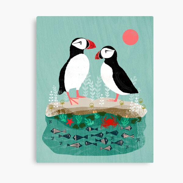 Puffins - Pair of Seabirds, Ocean, Sea Life, Coastal Art by Andrea Lauren Canvas Print