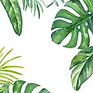 Palm Fronds fresh leaves summer and spring by texashandmade