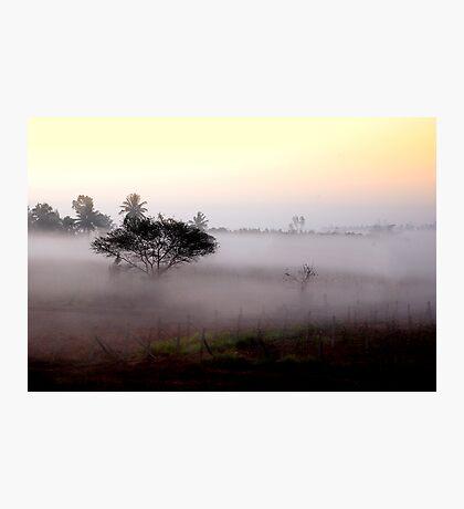 Misty sunshine Photographic Print