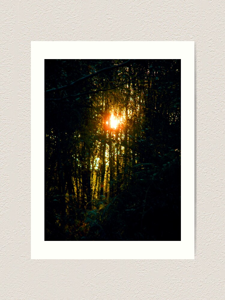 Alternate view of Sunshine on my shoulders makes me happy Art Print