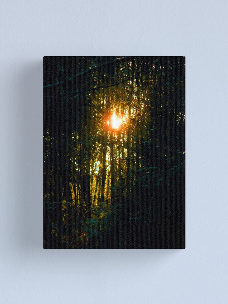 Alternate view of Sunshine on my shoulders makes me happy Canvas Print