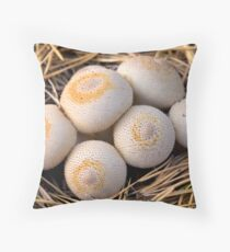 group of mushrooms (Lycoperdon umbrinum). Throw Pillow