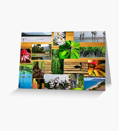 Colourful Cairns college nature Greeting Card