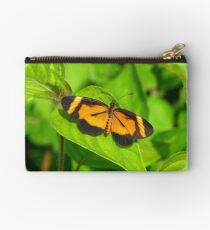 Heloconius Butterfly Studio Pouch