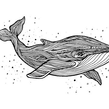 Hand draw whale by Elsbet