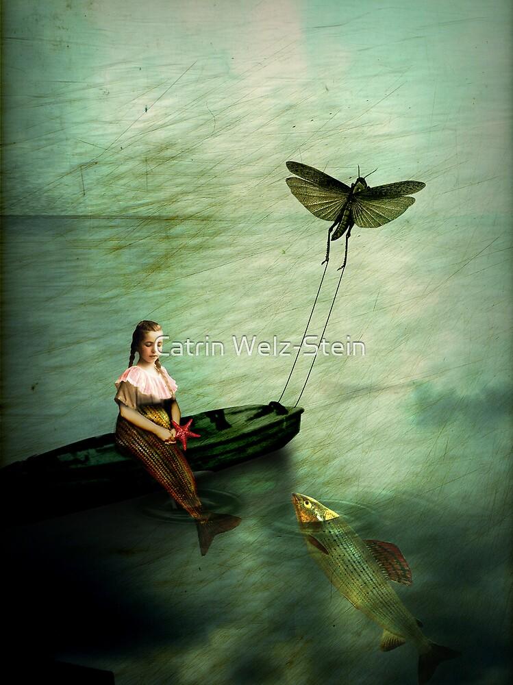 The starfish by Catrin Welz-Stein