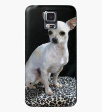 chihuahua sitting Case/Skin for Samsung Galaxy