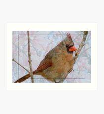 Cardinal in Japanese Magnolia Art Print