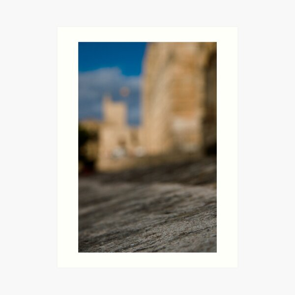 La Seu - Palma de Mallorcas 12th Century Cathedral #2 Art Print