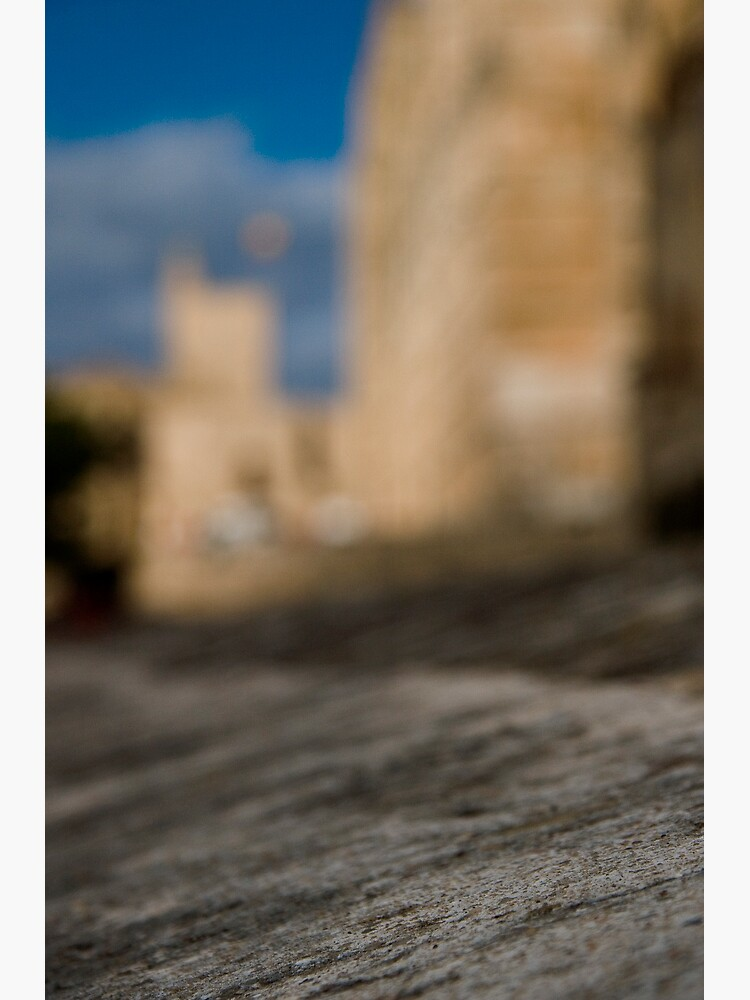La Seu - Palma de Mallorcas 12th Century Cathedral #2 by rogues70