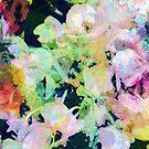 Rainbow Petals by Fay270
