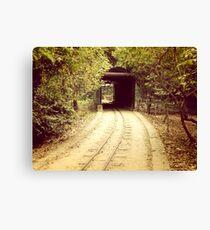 Tunnel & track Canvas Print