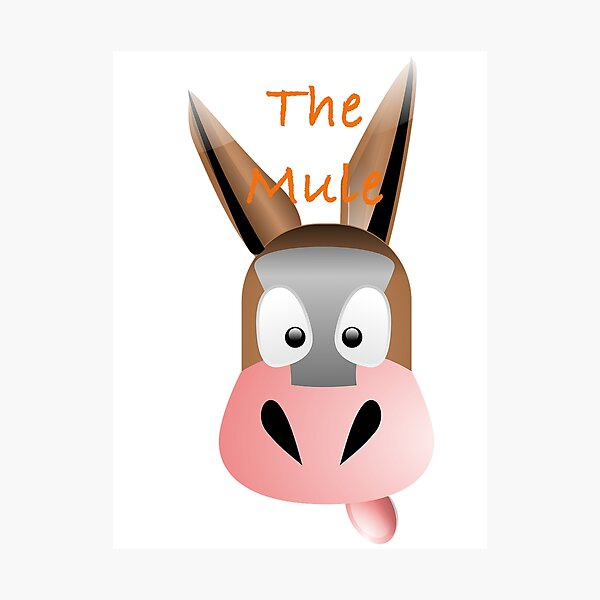 The Mule Photographic Print