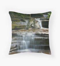 Buttermilk Creek Throw Pillow