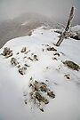 Winter on the Razorback, Mt Hotham, Australia by Michael Boniwell