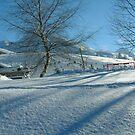 Bretzovica, Lepenec valley, Kosovo by dougie1