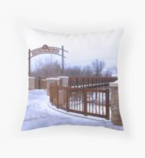 Fish Creek in Snow Throw Pillow