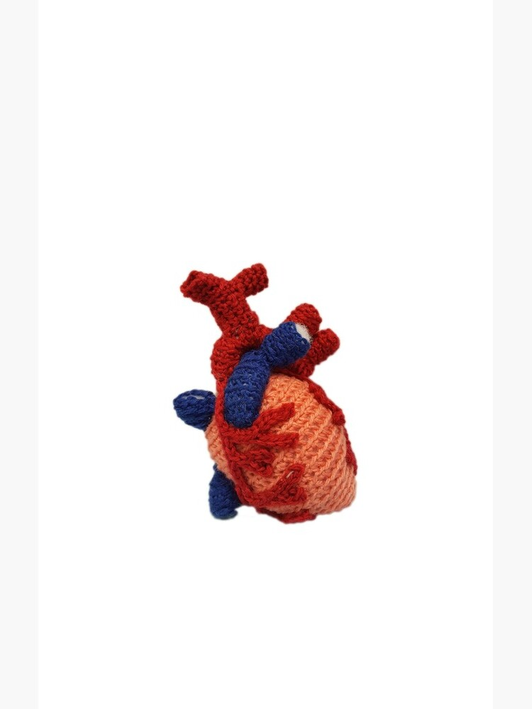 Crocheted Anatomical Heart by thepurplelilac