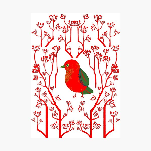 Red Bird Photographic Print