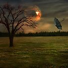 In The Eye Of The Storm by Elizabeth Burton