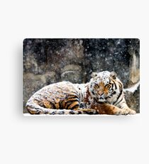 Waking Up Grumpy Canvas Print