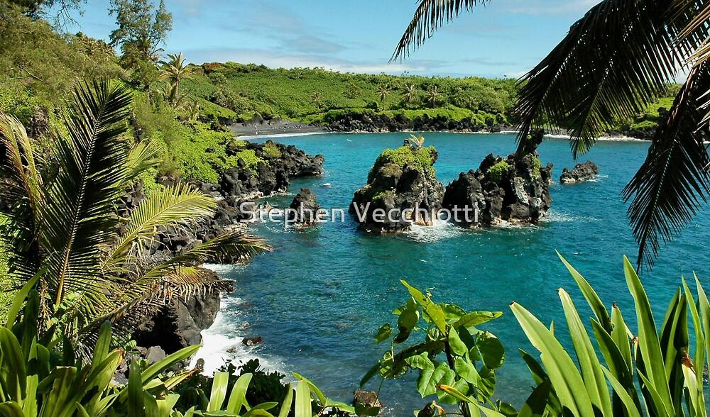 Wai'anapanapa State Park, Maui by Stephen Vecchiotti