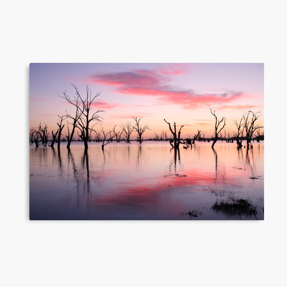 Lake Victoria Dawn, Australia Canvas Print