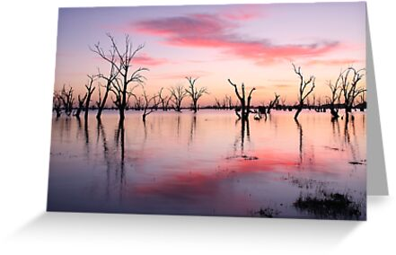 Lake Victoria Dawn, Australia by Michael Boniwell