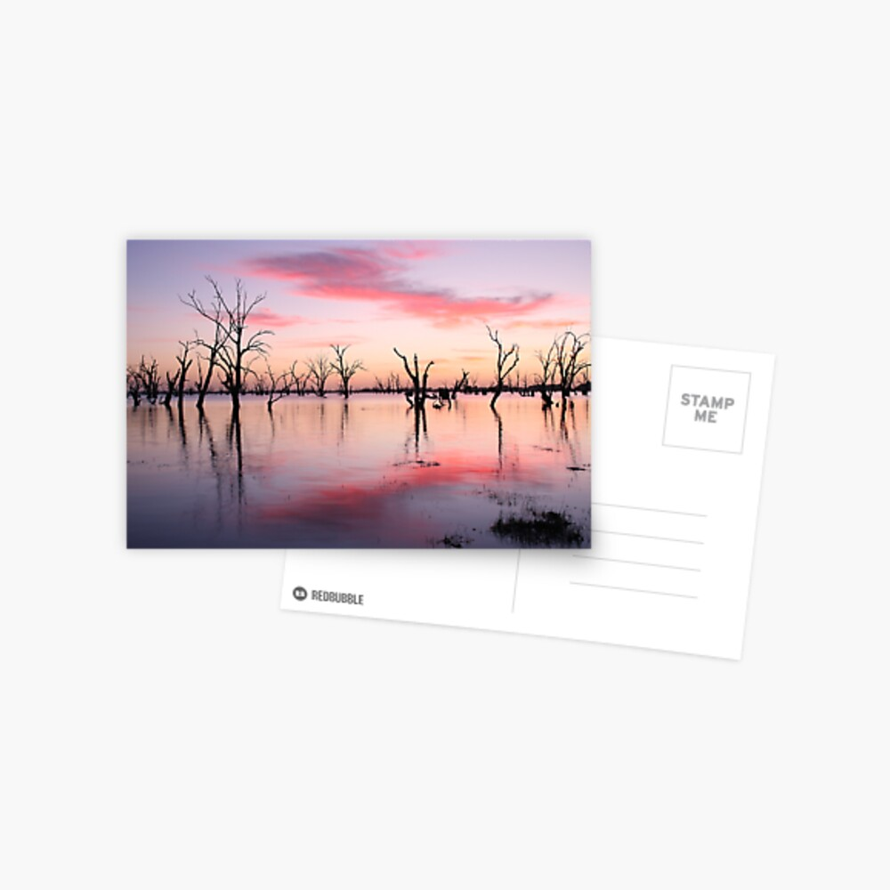 Lake Victoria Dawn, Australia Postcard
