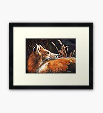 For Fox Sake Framed Print