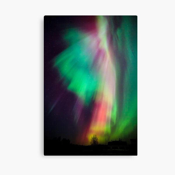 Beautiful multicolored northern lights in Finland Canvas Print