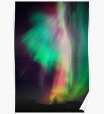 Schöne mehrfarbige Nordlichter in Finnland Poster