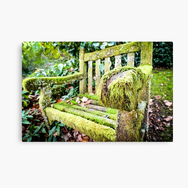 AN ANCIENT CHAIR COVERED IN MOSS Canvas Print
