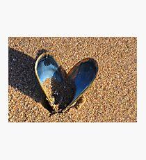 Fragile Heart............ Photographic Print