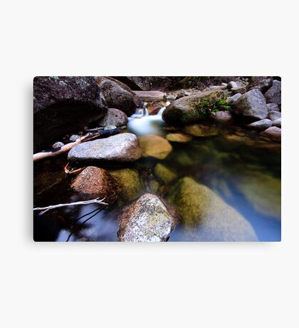 Translucent Reflections Canvas Print