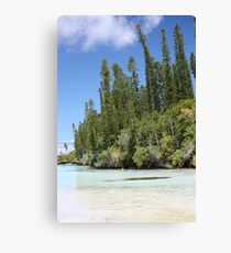 Oro Bay Canvas Print