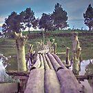 Bambusbrücke auf einem See von Mohit Sebastian