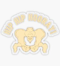 Hip Hip Hooray - Funny Medical Student Quote Gift Transparenter Sticker