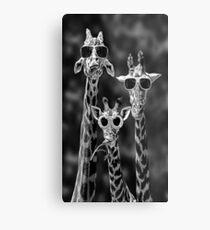 Funny Animal Metal Print